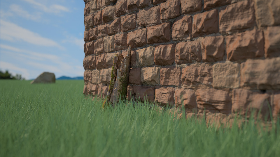 Wall and Grassy Field Close-up Outdoor Archviz Render